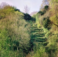 The zig-zag path at Selborne