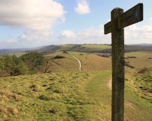 Picture of Beacon Hill, West Sussex