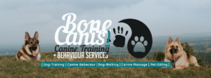 Dog Training Services by Bone Canis